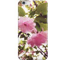 Warm Pink iPhone Case/Skin