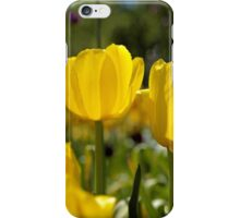 Spring Time Tulips iPhone Case/Skin