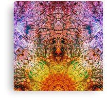 Heart Rock 2000-2 Canvas Print