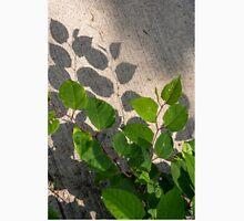 Leaves Shadows Unisex T-Shirt