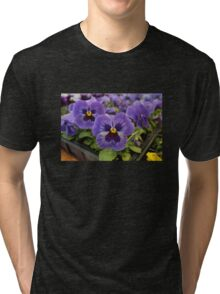 Blue Pansies Tri-blend T-Shirt
