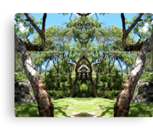 Two trees at the entrance. Canvas Print