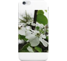 Pure Life iPhone Case/Skin