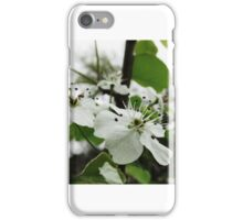 Pure Life iPhone Case/Skin