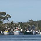 Jerseyville Fishing Boats. by Mywildscapepics