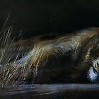 Sleepy Head by Tom Godfrey