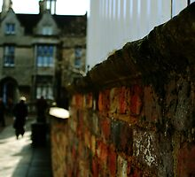 Down the wall.. by Ruth  Jones