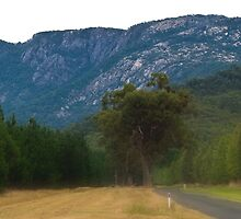 Mount Buffalo, Victoria by Darren Greenwell