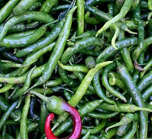 Chilli? by Malcolm Roberts