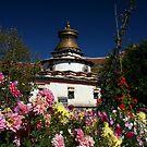 Kumbum Stupa by Malcolm Roberts