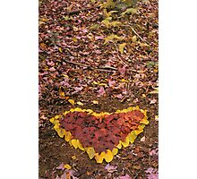 The Heart of the Catskills Photographic Print