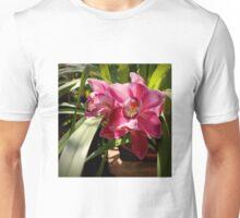 Raspberry Squared Unisex T-Shirt