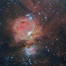M42 Region - Great Nebula in Orion by Jeff Johnson