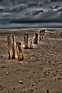 Sands End by Paul Thompson Photography