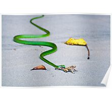 Frog's Last Breath Poster