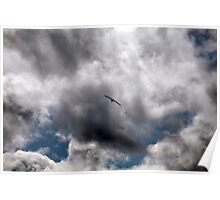 Spread Those Wings Poster