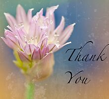 Winter Chive Thank You Card by Marilyn Cornwell