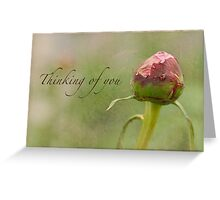 Peony Bud Thinking of You Card Greeting Card