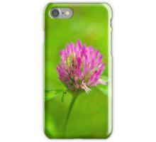 Pink clover flower iPhone Case/Skin