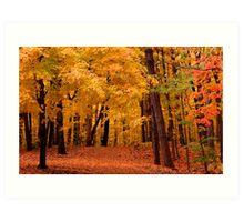 Autumn alley Art Print