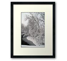 Snow Filled Trees (V) Framed Print