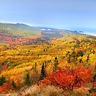 Beautiful autumn landscape by snehit