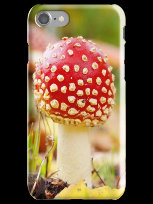 Toadstool mushroom by Arve Bettum