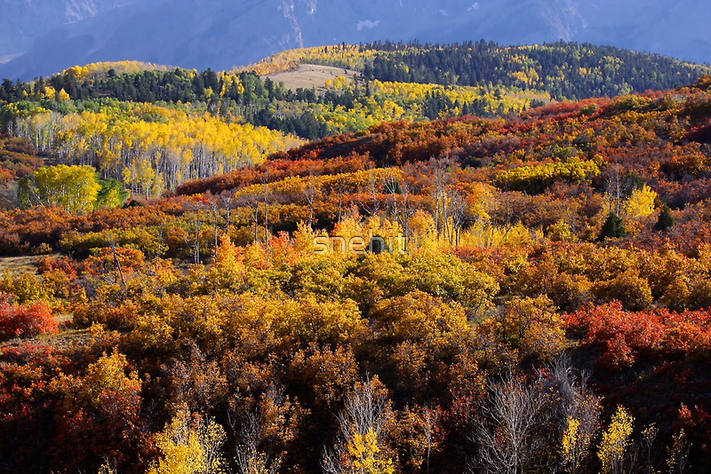 San Juan mountains scenic area by snehit