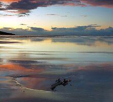 Seaweed sand and sky by Blackgull