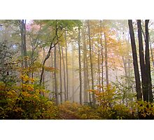 Fog in Allegheny mountains Photographic Print