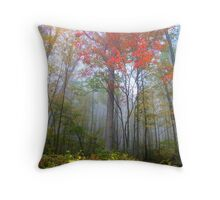 Fog in Allegheny mountains Throw Pillow