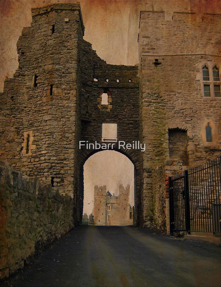 Swords Castle gate by Finbarr Reilly