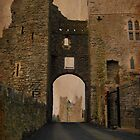 Swords Castle gate by Finbarr Reilly