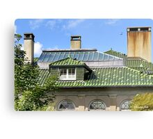 A Roof with Age and Character Metal Print