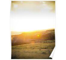 Sage Sunset Poster