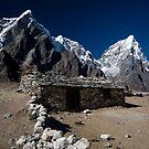 Mountain Living by Mark Poulton