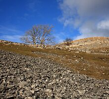 Limestone Country - Yorkshire Dales by Kat Simmons