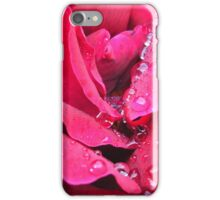 Rain drops on red rose iPhone Case/Skin