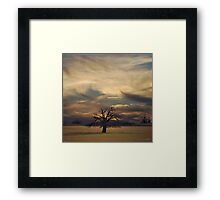 Solitude of Beauty Framed Print