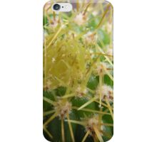 A Little Prickly iPhone Case/Skin