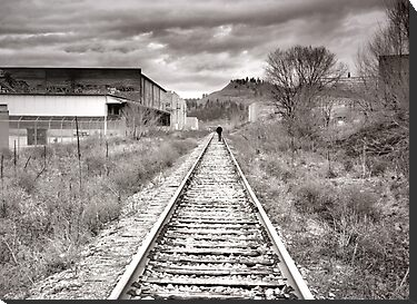 Railway Tracks and Graffiti by Tara  Turner
