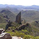 From the 'High Tops! Warrumbungle Nat. Park.Coonabarabran, N.S.W. Australia by Rita Blom