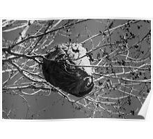 Hornet Nest Poster