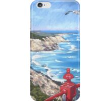 View from the Lighthouse iPhone Case/Skin