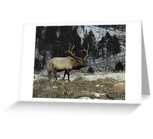 Lord of the Realm #1 Greeting Card