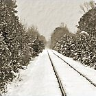 Snowy Tracks by Jeff Ore