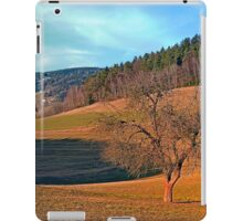 Lonely tree in springtime scenery | landscape photography iPad Case/Skin