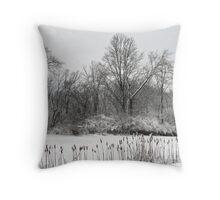 Frozen Cat Tails Throw Pillow