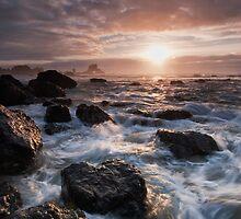 Waves Rush In by Ryan DesJardins