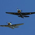 Avenger Twins - Evans Head Fly-In by muz2142